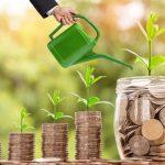 Les solutions pour faire fructifier son argent